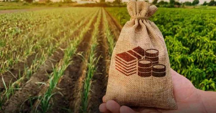 Krishi Bank to raise Tk10,318cr via bonds to meet capital deficit