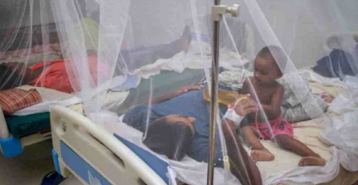 2 more die from dengue, 211 others hospitalised