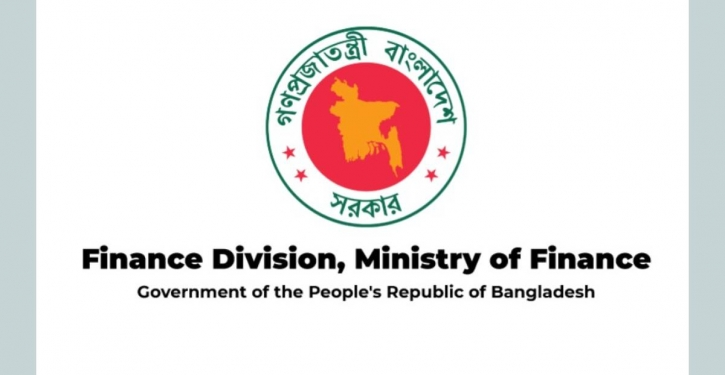 'Apprise finance ministry debt-to-equity ratio before investment'