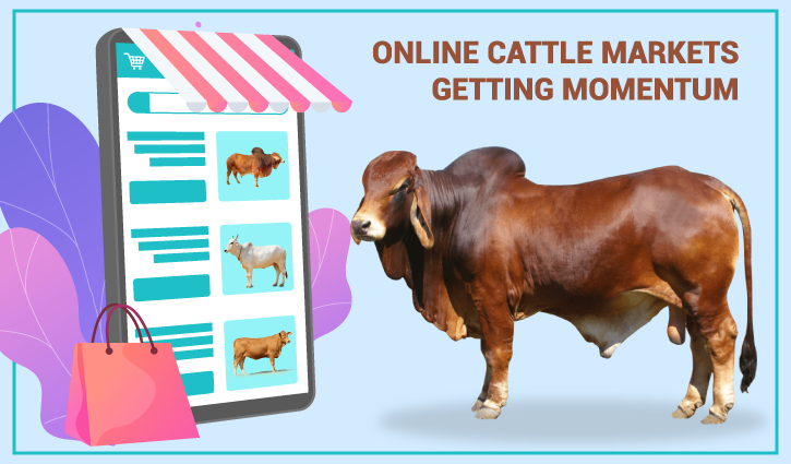 Online sale of sacrificial animals soars amid Covid restrictions