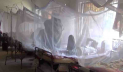 Dengue: 25 cases in 24 hours