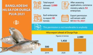 Bangladesh to export record amount of hilsa to India this season