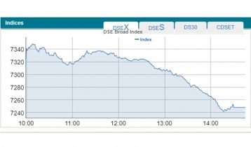 DSEX suffers biggest single-day fall in a month
