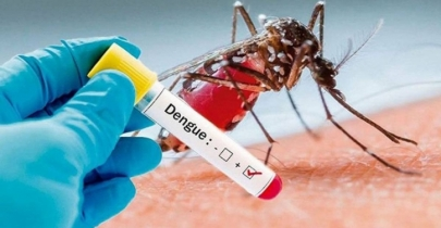 Dengue claims 2 more lives
