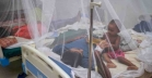 Dengue claims 2 more lives in Dhaka