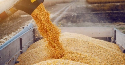 Spiralling food grain prices correspond to rising int'l fuel prices: Kamal