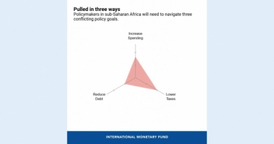 Policymaker's trilemma over Covid-19 outbreak in sub-Saharan Africa