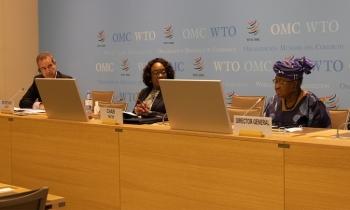 WTO members look to MC12 outcome on trade finance
