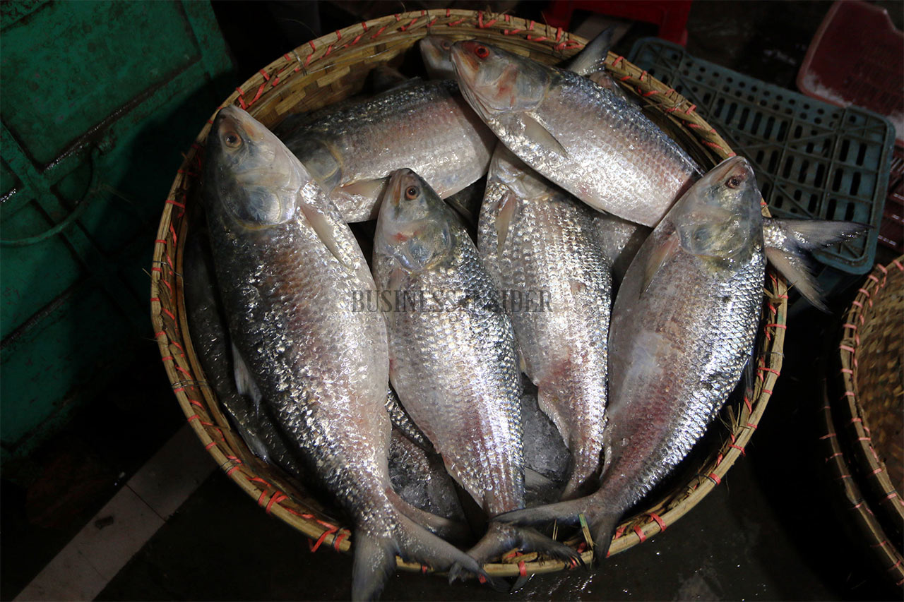 A basket full of silver Hilsa