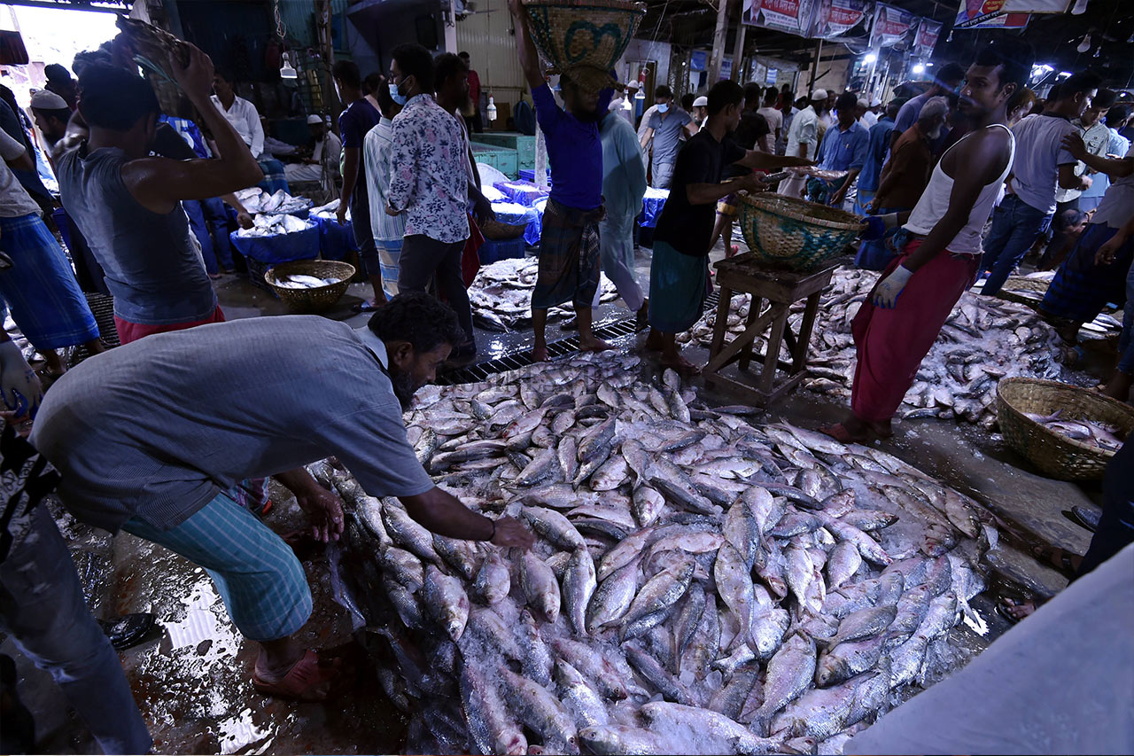 Vendors sell Hilsa fish at a fish landing station in Chandpur district.